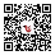 安徽灵狐网络公众号